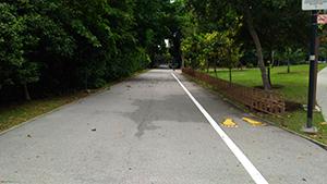 East Coast Park Learner Track
